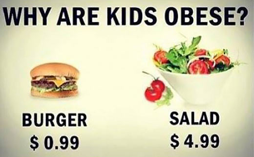 funny-burger-salad-price-obese