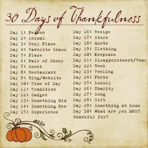 Fox & Broom|30 Days of Thankfulness